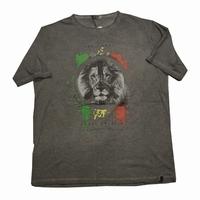 """T-shirt met korte mouwen  """" Leeuw  """"   Grijs"""